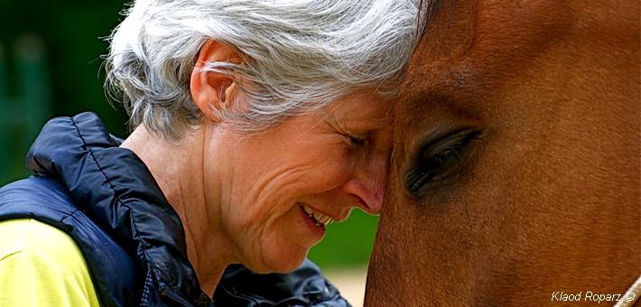 L'importance de comprendre le comportement de son cheval