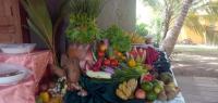 Hôtel familial ayurvédique Sri Lanka - Zen&go